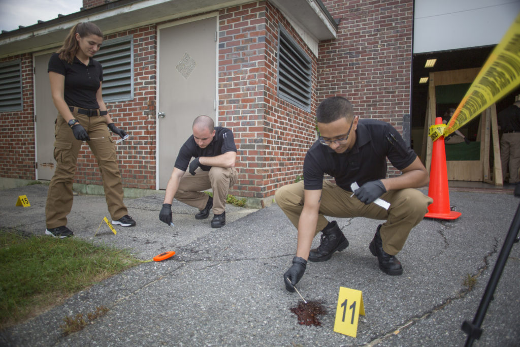 Students in the Forensic Science degree at Central Maine Community College analyze a staged outdoor crime scene.